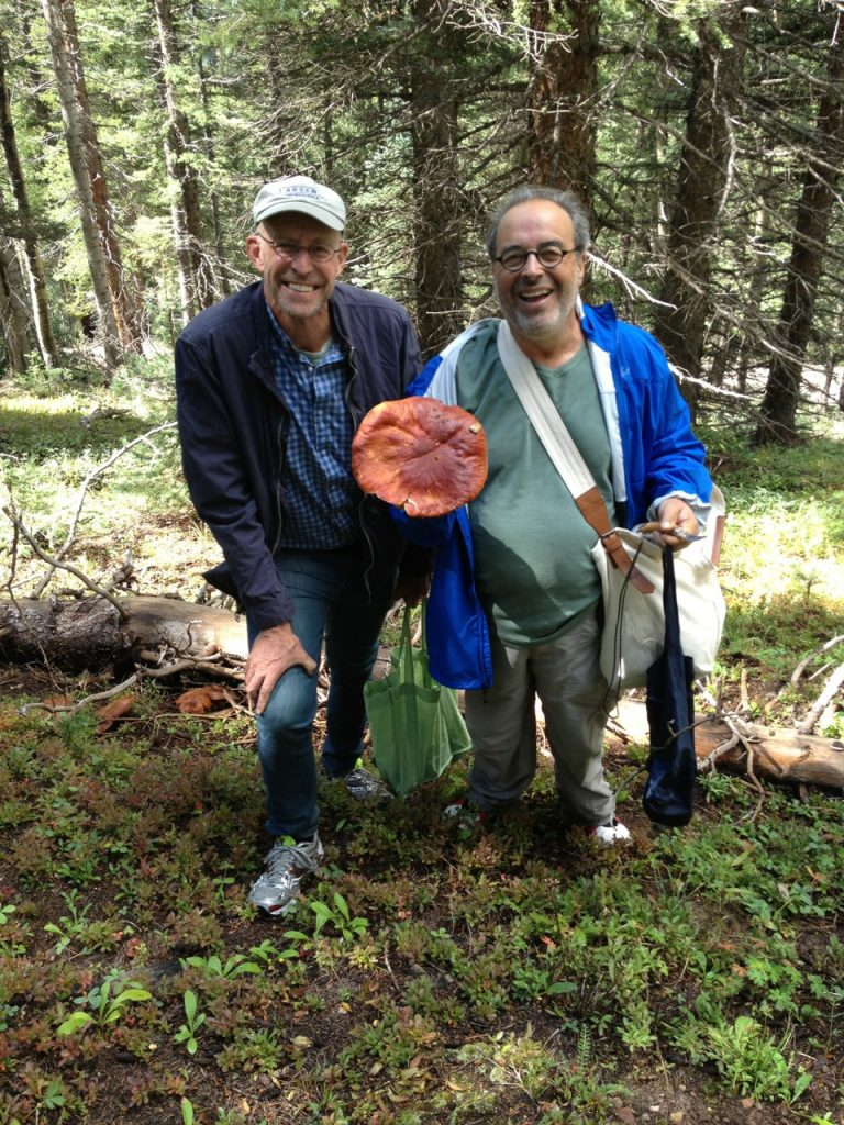 Michael Pollan e i funghi