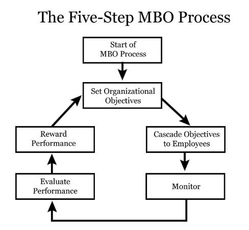 Processo MBO